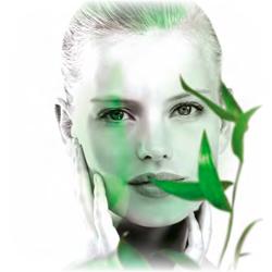 Козметика на Green Master